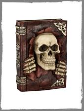 Totenkopf Buch Spardose