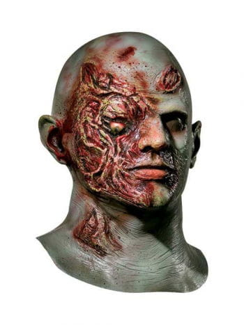Zombie Land of the Dead Mask