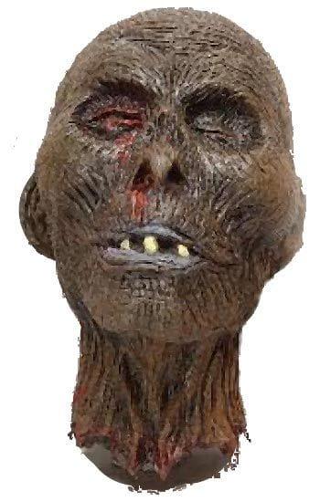 Rotting zombie head