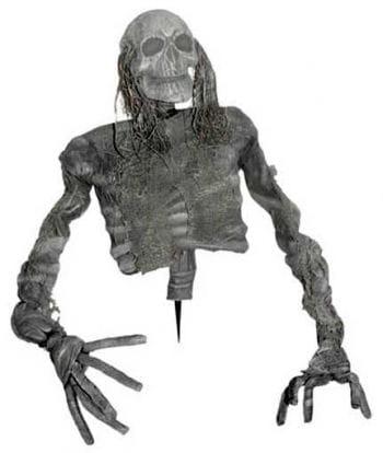 Rotting Skeleton Torso
