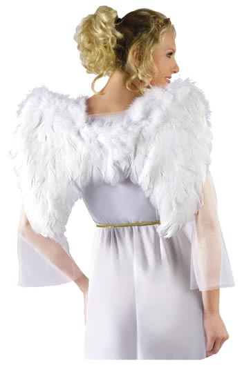 White Wings with Feathers and Lace