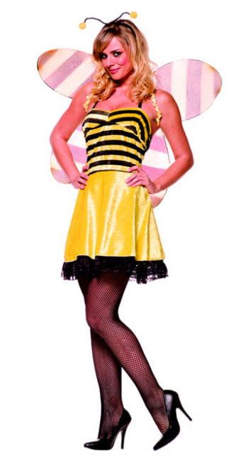 naughty honey bee Premium Costume. S / 36
