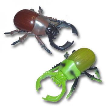 Slimy Jungle Camp Stag Beetle