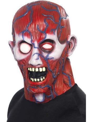 Anatomy man mask