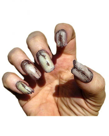 Horror Fingernägel Zombie