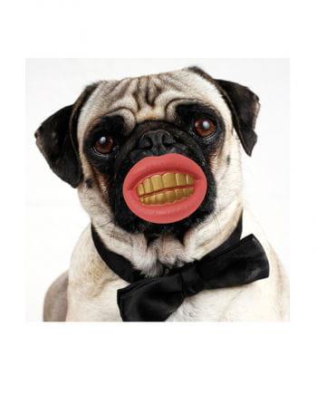 Dog Toy Grins Esch noughties