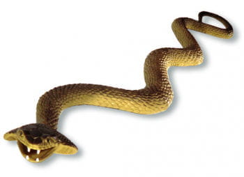 Cobra snake brown