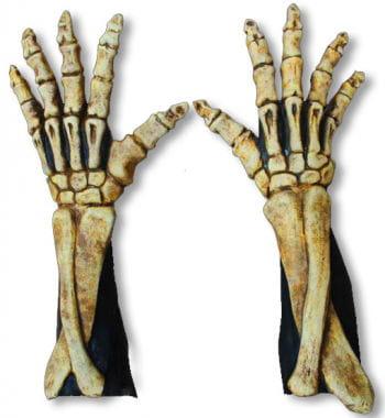 Lange Skelett Handschuhe knochenfarben