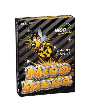 Nico Biene Bodenkreisel