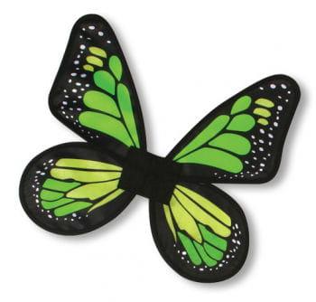 Satin Schmetterlingsflügel Grün