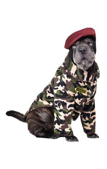 Soldaten Kostüm für Hunde